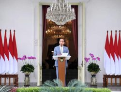 Presiden Perkenalkan Jajaran Dewas dan Direktur INA