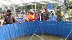 Tim Wasev Mabes TNI yang dipimpin Brigjen TNI Edy Santoso, bersama Danrem 044 Gapo Brigjen TNI Jauhari Agus Suraji dan Dandim 0418 Palembang Kolonel Inf Heny Setyono juga mendatangi tambak ikan dan kebun warga.