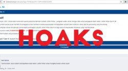 Situs Website yang dipastikan Hoaks oleh PLN