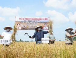 Herman Deru Jadikan Banyuasin sebagai Kekuatan Food Estate Penyangga Ketahanan Pangan Nasional