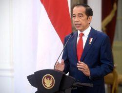Ini Pandangan Presiden Jokowi Terkait SDG's pada Forum ECOSOC