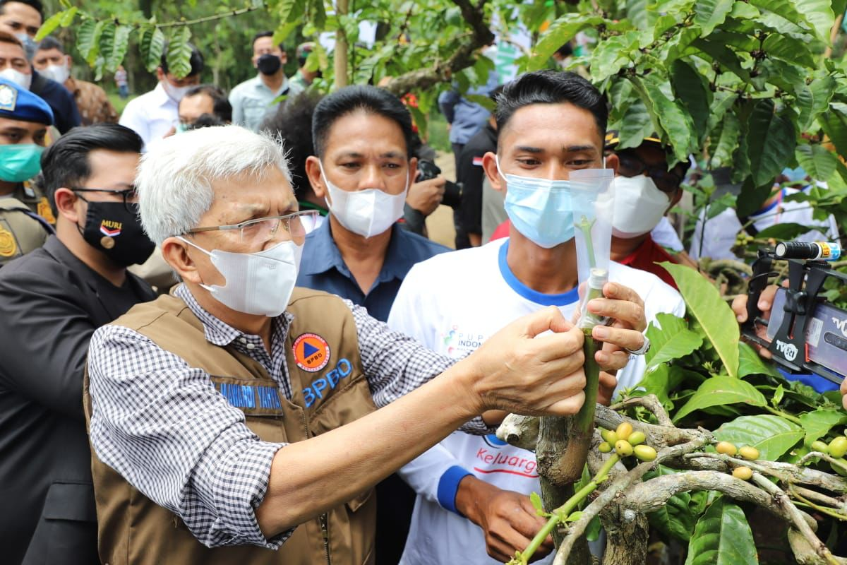 Wagub Sumsel Mawardi Yahya launching gerakan sejuta batang sambung pucuk tanaman kopi bantuan Gubernur Sumsel tahun 2021 di Desa Rempasai Kelurahan Panjang Kecamatan Dempo Selatan Kota Pagaralam, Sabtu (4/9).