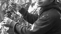 Penyair asal Madura Mahwi Air Tawar